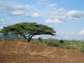 viaggio_a_wamba_maggio_2009-013