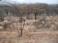 viaggio_a_wamba_novembre_2010-047